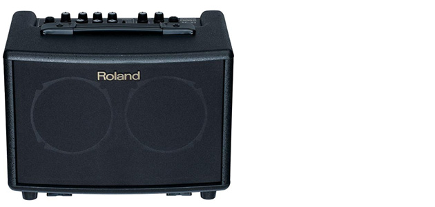 Top 8 Best Acoustic Guitar Amps For Gigs & Practice