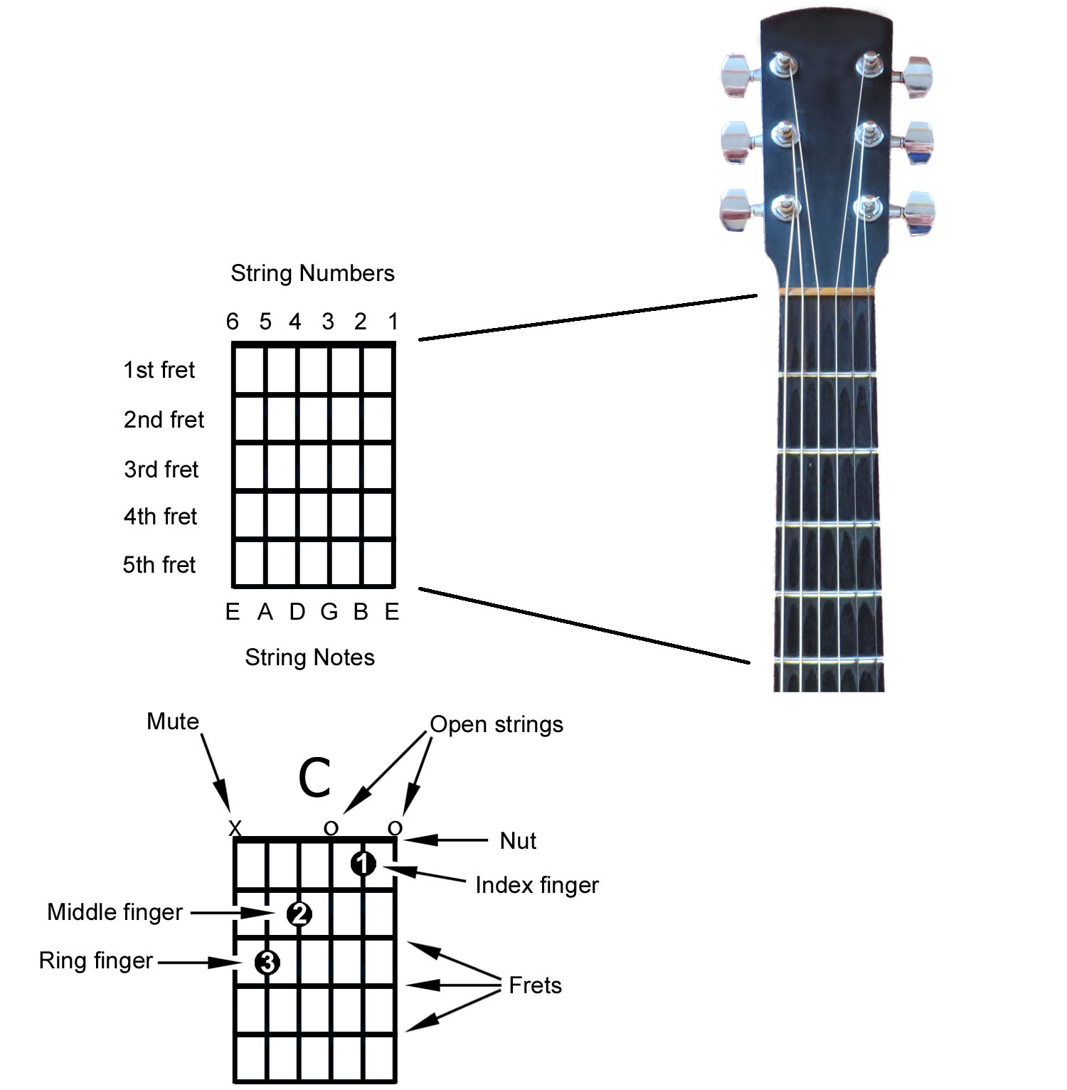 Three Dots Between Thumb And Index Finger: How To Read A Chord Diagram